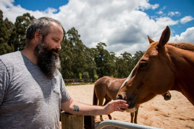 War Veteran Daniel Cooper pats a horse during an equine therapy session.