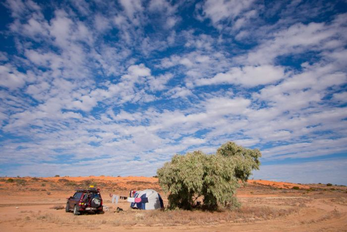 The family parks the car and sets up camp next to a tree in the middle of nowhere.