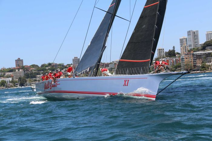 Wild Oats XI sailing on Sydney Harbour.