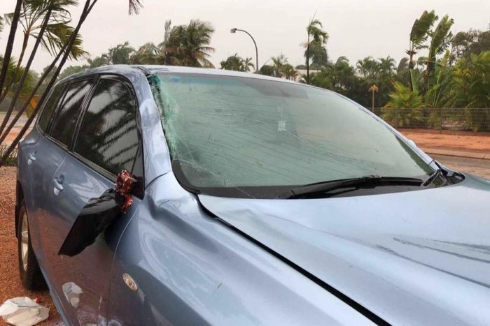 A car with damage after a palm tree fell on it in Cyclone Hilda.