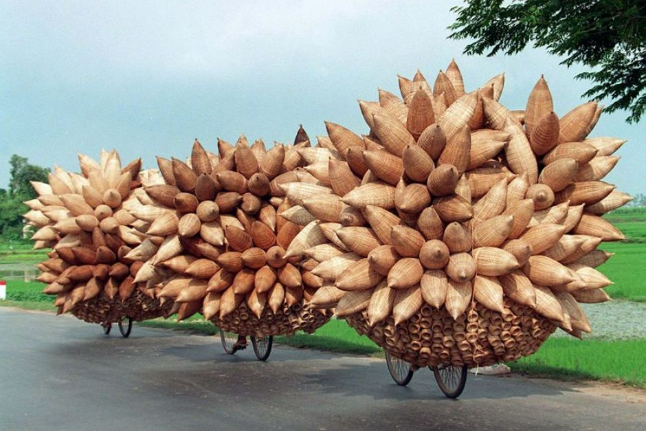 Bicycles loaded with bamboo fish traps