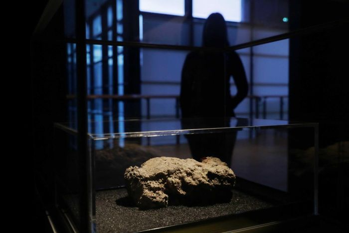 A congealed substance sits in a display case under a light while a figure looks on from the shadows