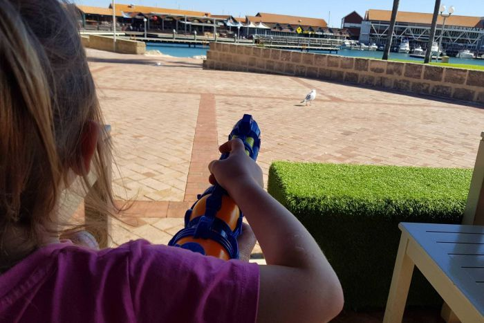 A person aims a water gun at a seagull from a restaurant terrace, with a boat harbour in the background.