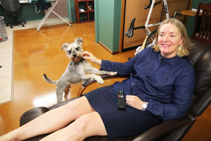 A woman watches TV on an armchair with a dog