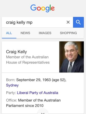 "A screenshot of a mobile screen shows Google search results for ""Craig Kelly""."