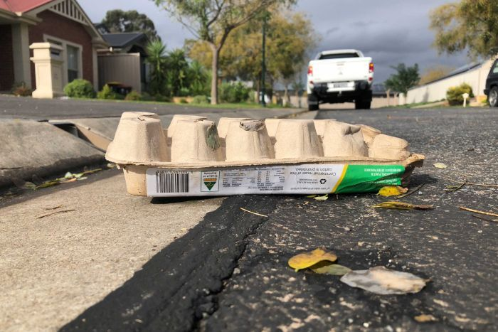 A carton of eggs sit on the road On Birch Ave, Salisbury East.