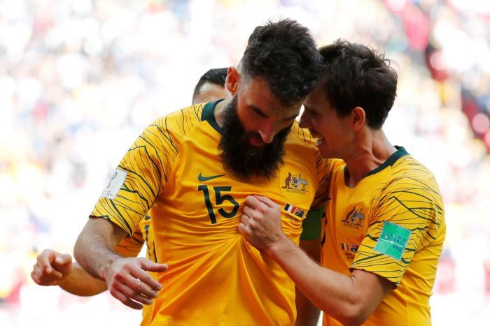 The Socceroos will hope to benefit from the increased interest in football via the World Cup.