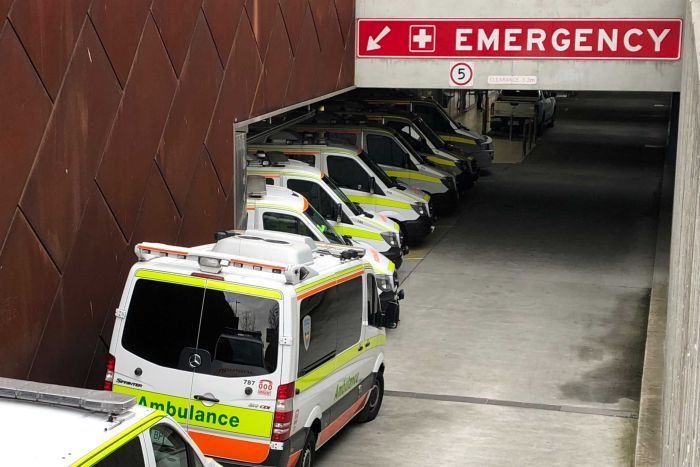 Ambulance ramping at the Royal Hobart Hospital