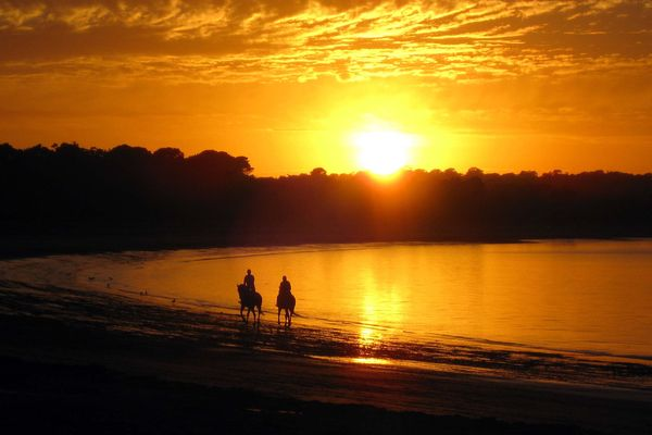 Two people ride horses on Balnarring Beach