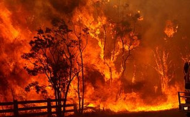 Is Your Email Ready For The Summer Bushfire Season