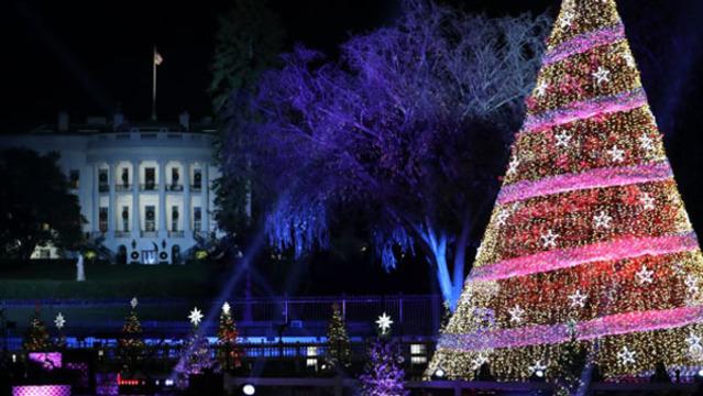 R WHITE HOUSE CHRISTMAS TREE 16x9 template_1545228757217.jpg_65438552_ver1.0_640_360_1545239675501.jpg.jpg