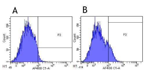 small resolution of flow cytometry anti il 2 receptor alpha antibody basiliximab ab245687