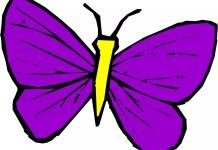 História da borboleta violeta
