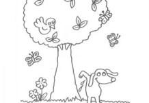 História da árvore sem flores