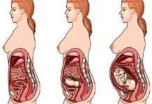 Como muda o corpo da mãe durante a gravidez