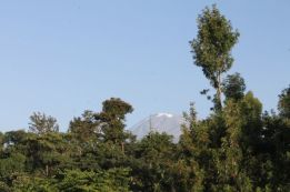 Mount Kili from the roof