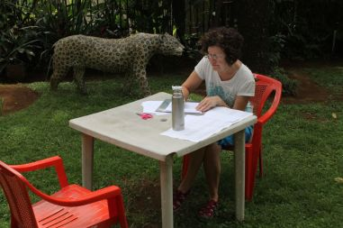 edwina filling in forms