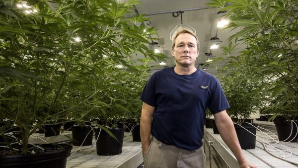 Canopy Growth CEO