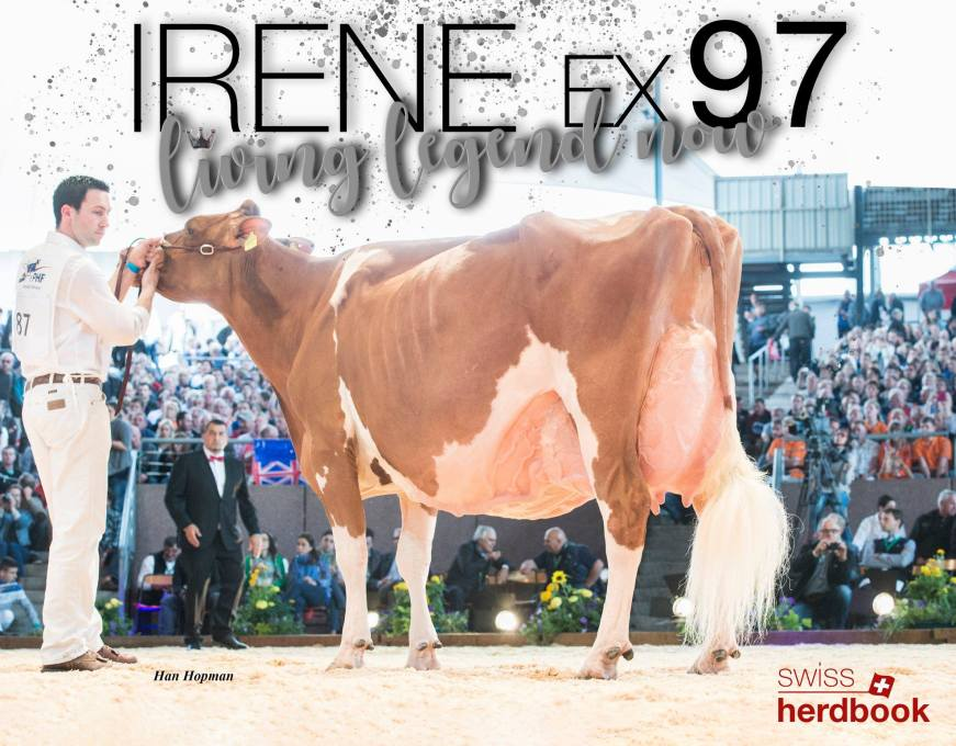 Suard JORDAN IRENE RED EX-97 Living Legend!