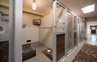 Dog Boarding, Lodging | The Woodlands, Spring TX | ABC Pet ...
