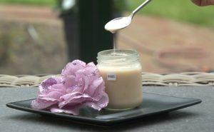 Yoghurt10