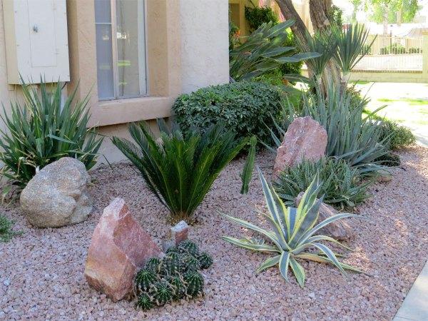 landscape design phoenix az residential