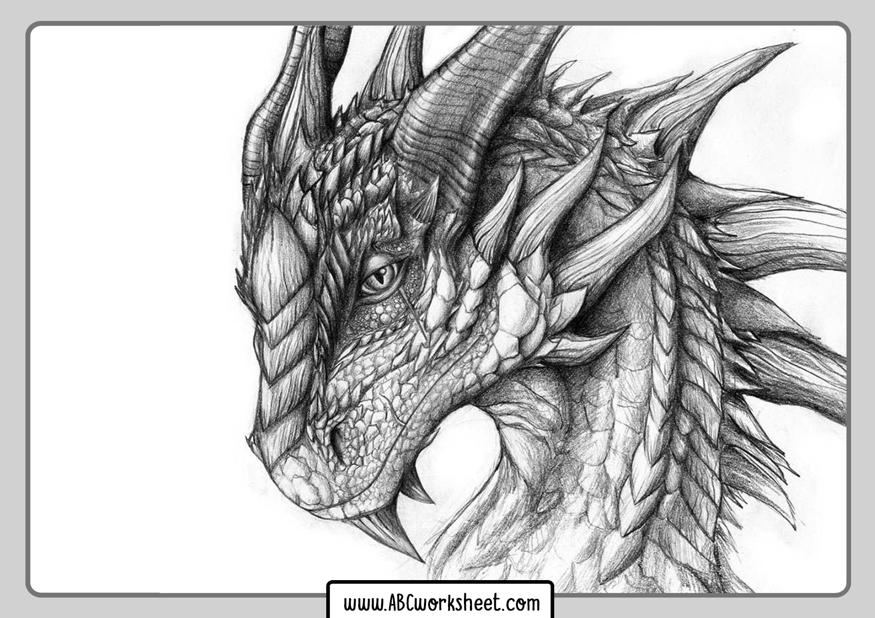 Dragon Picture For Coloring