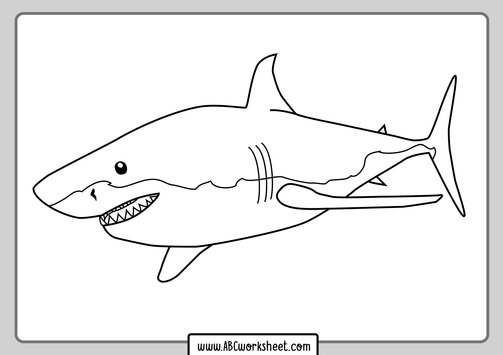Great White Shark Drawings For Coloring