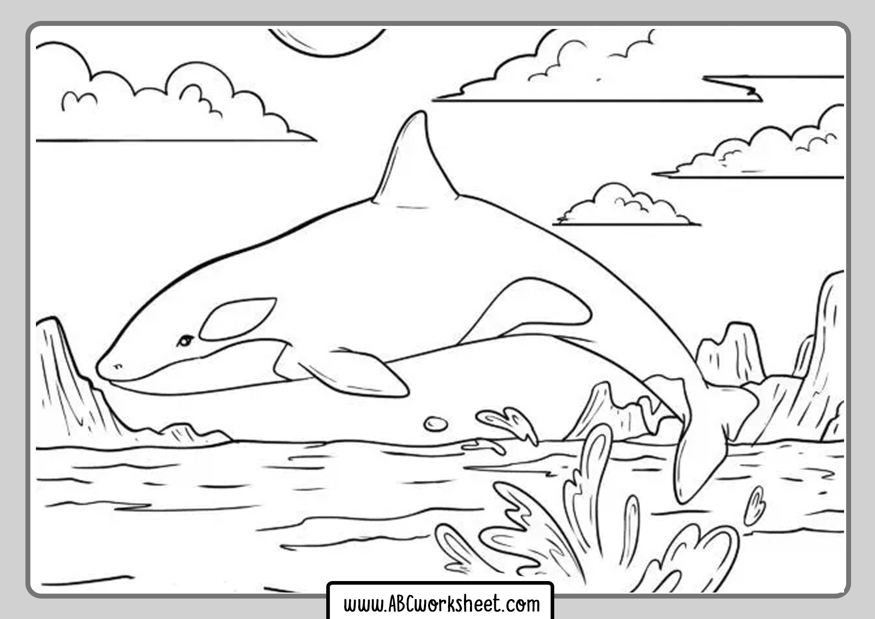 Killer Whale Orca Drawing For Coloring