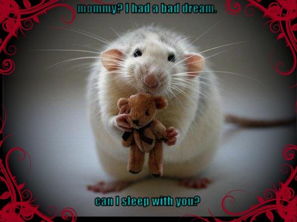 adult baby bad dream