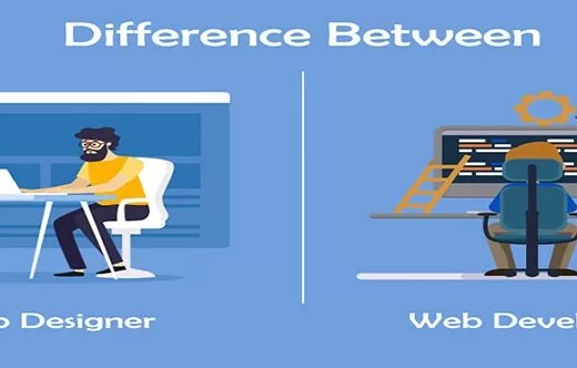 show the difference between web designer and web developer