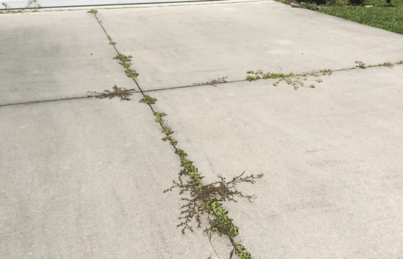 Block Weeds From Growing Along Driveway Expansion Joints