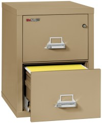 Fireproof Fireking 25 Vertical 2 Drawer Letter File ...