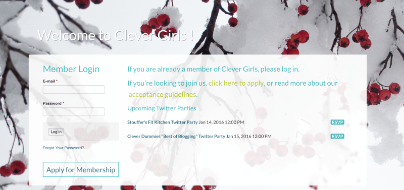 Clever Girls Network to Create Sponsored Blog Content