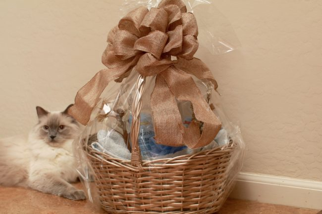 Jergens skin care winter holiday gift basket