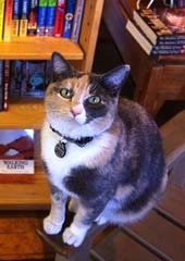Mabel from Moby Dickens Bookshop