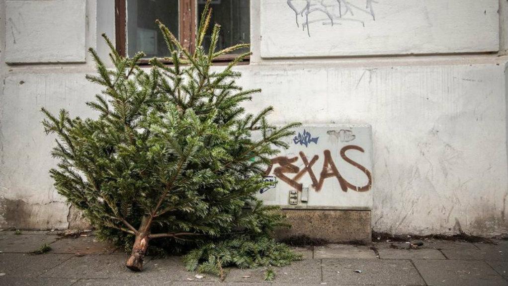 Weihnachtsbaum entsorgung berlin spandau