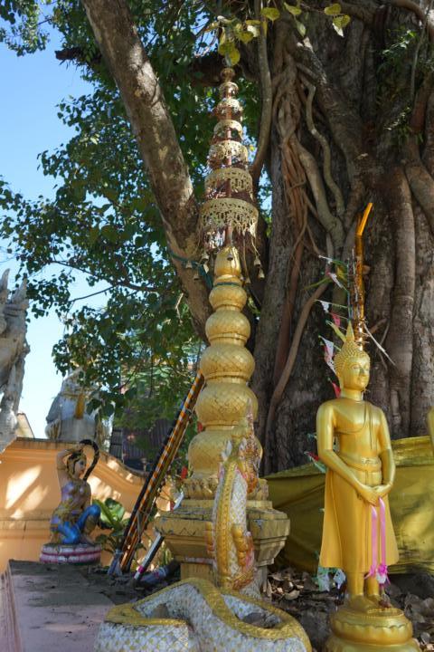 Mekong Laos Flusskreuzfahrt