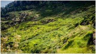 Levada Trails ohne Ende