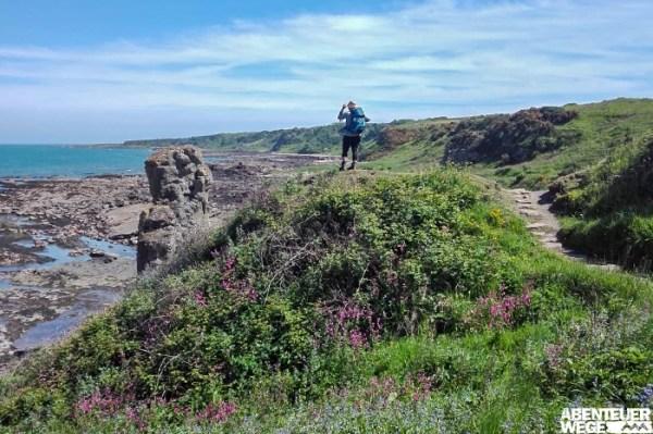 Wandern auf Küstenpfaden an Schottlands Ostküste