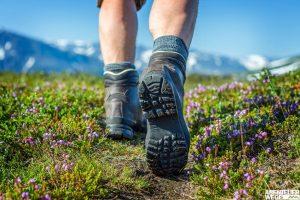 Wanderer auf einem Pfad zwischen Blumen
