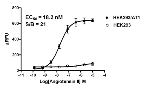 14-6177ACL, AT1 Stable Cell Line, AT1 Cell Line