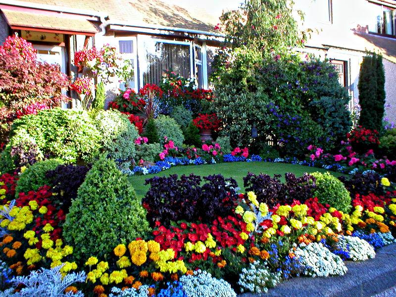Aberdeen Garden Competition front garden