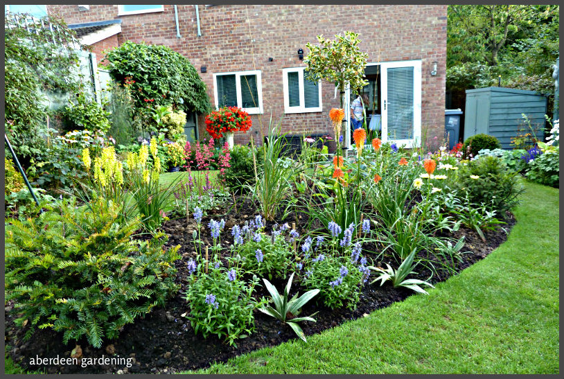 New Perennial bed (5)