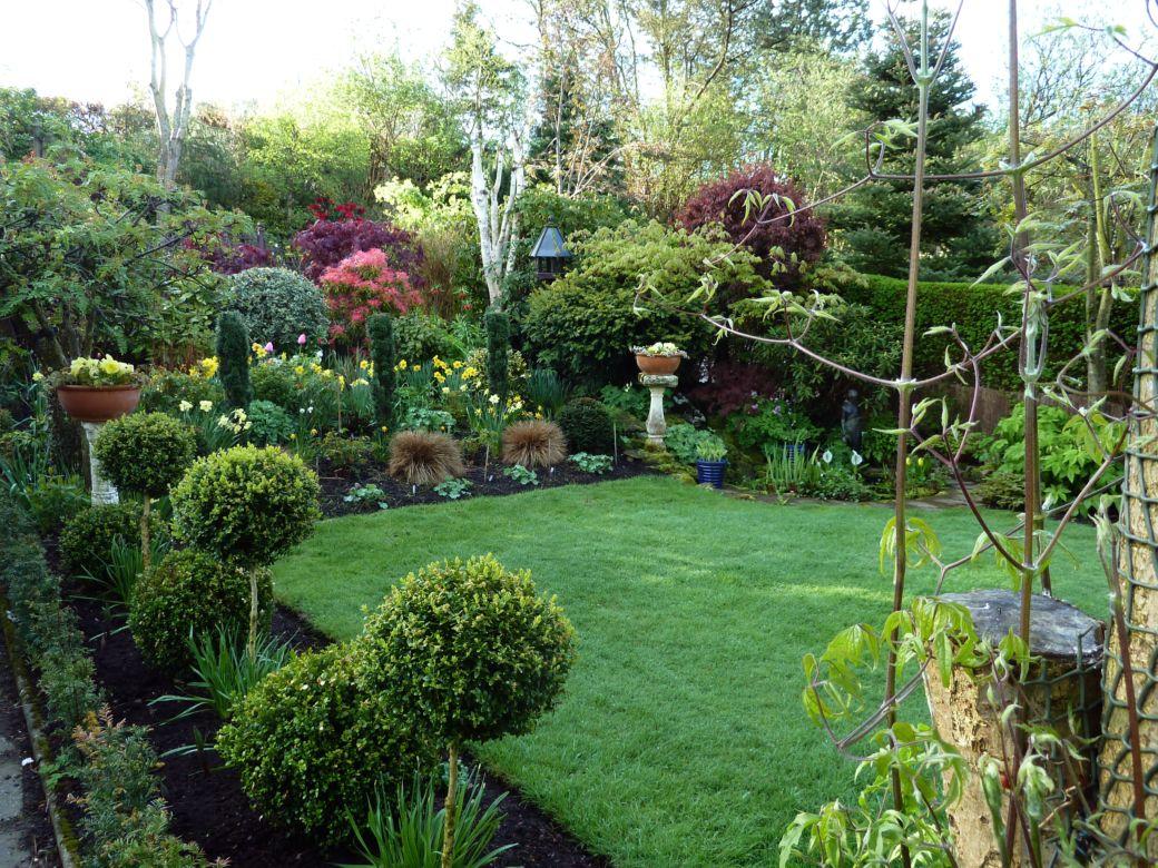 Back garden 24th April (5)