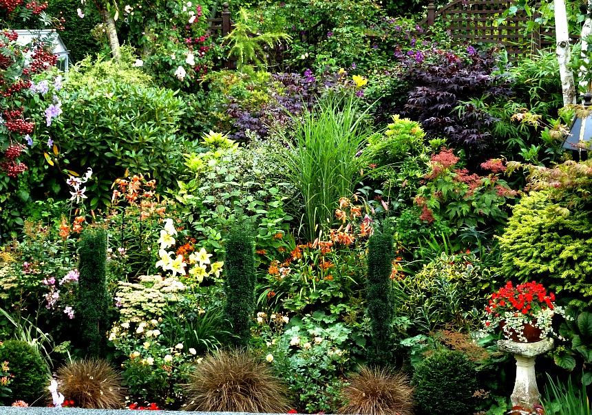 Back garden taken from upper floor
