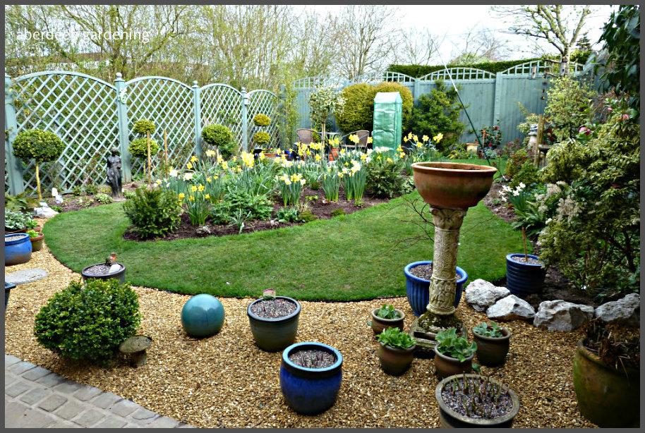Back garden April (2)