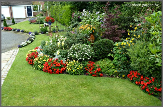 Front garden (16)