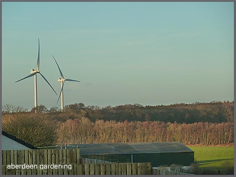 Wind turbines in Wemyss