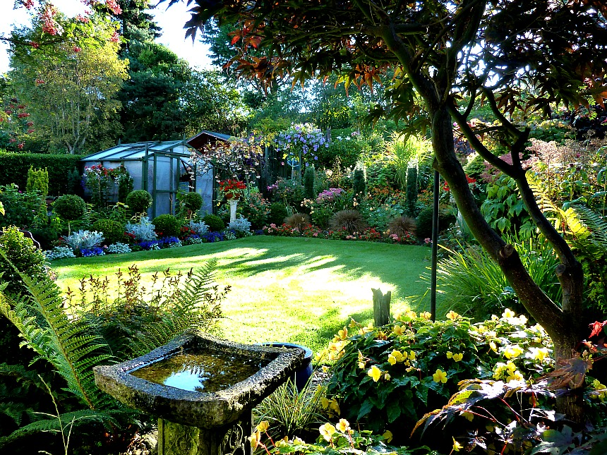 A glorious September day in our back garden